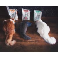 Выбор корма для котов