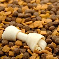 Преимущества сухого корма для собак